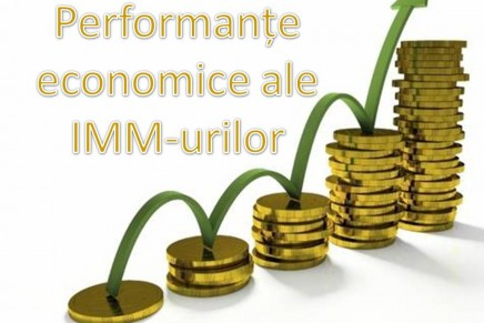 Perfomantele economice ale IMM-urilor in anii 2013, 2014 si 2015