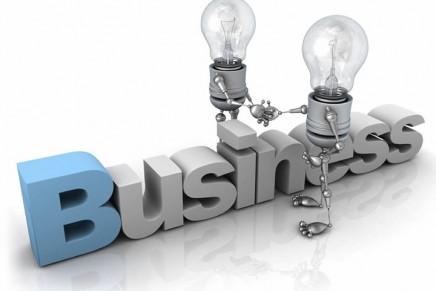 Activitati abordate cu precadere in IMM-uri in anul 2016
