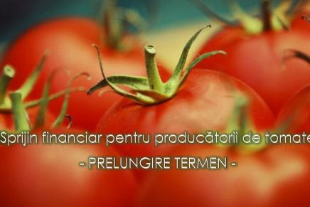Prelungirea termenului privind sprijinul financiar  pentru producatorii de tomate