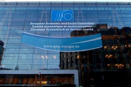 """Inedita"" plenara a Comitetului Fondului Social European (FSE) 3-4 iunie 2020"