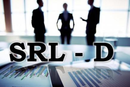 """Modul de acordare a punctajelor în cadrul programului """"SRL – D"""""""
