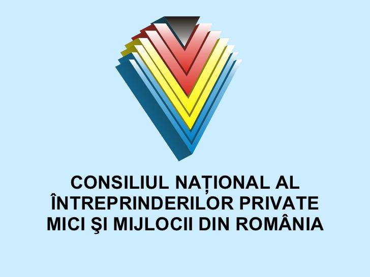 """Conducerea CNIPMMR a prezentat """"Programul de bună guvernare pentru mediul de afaceri – Soluții practice pentru sprijinirea întreprinzătorilor autohtoni"""""""