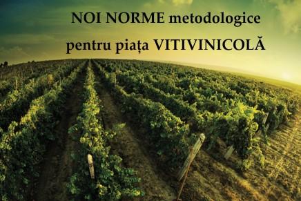 Noi norme metodologice pentru piata vitivinicola