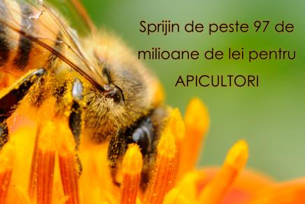 Sprijin de peste 97 de milioane de lei pentru apicultori