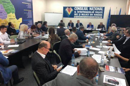 Sedinta de Colegiu National a CNIPMMR